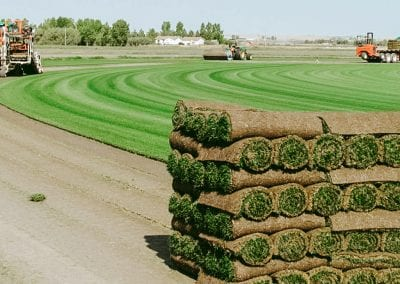 pallet of sod on field with tractors