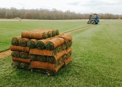 pallet of sod in a field