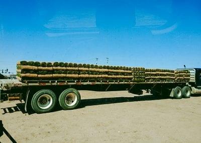 semi truck of sod pallets